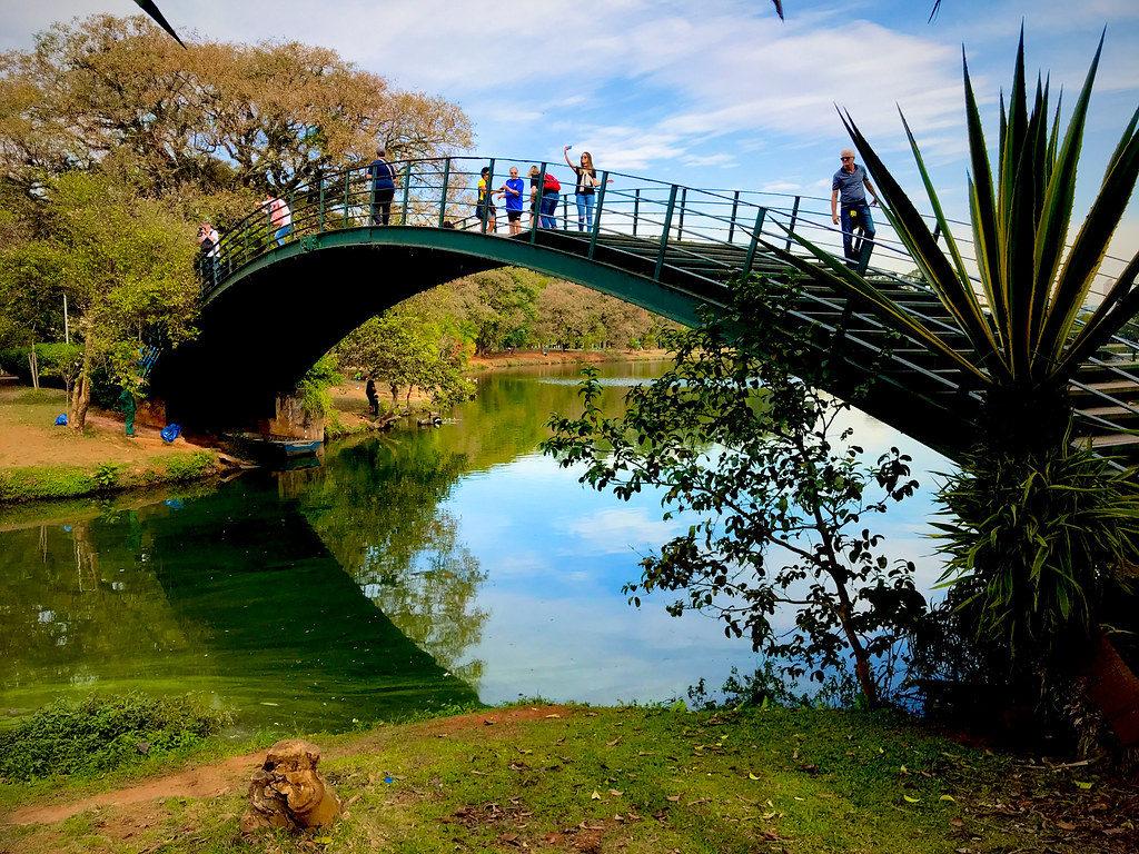 Imagem da ponte que fica dentro do Parque do Ibirapuera